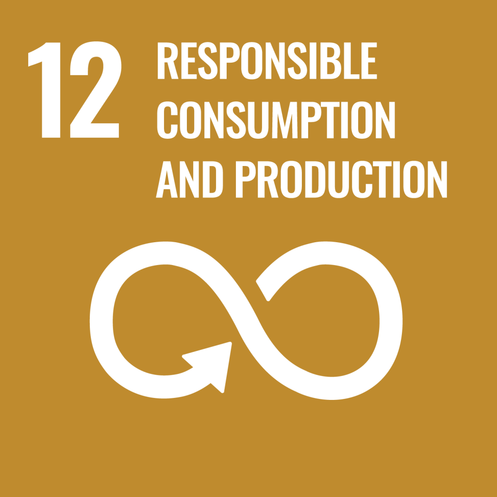 Goal 12 - Responsible Consumption and Production